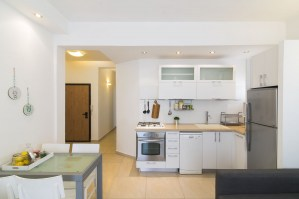 tlv2gocitycollectiontwobedroomapartment9mikhakitchen